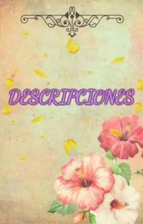 Descripciones by SilaquiNairel