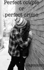 Perfect couple or perfect crime by gayouuuu