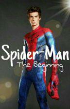 Spider-Man / The Beginning by Factionas