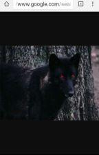 Blind Wolfs by MidnightAlfaWolf