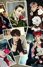 B.A.P The Type by galaxyXD