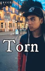 Torn [William Singe FF] | ✔️ by qxeendottie