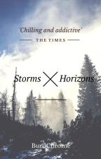 Storms & Horizons by Burdchrome
