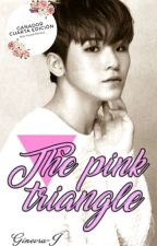 ∆The pink triangle∆ [Jicheol] by Ginevra-J