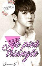 ∆The pink triangle∆ [Jicheol] by Ginevra-J