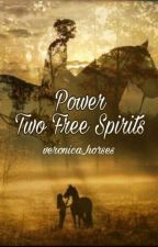 Power 2: Two Free spirits by Veronica_horses