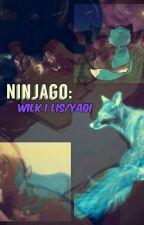 Ninjago: Wilk i Lis/ Yaoi by NinjaAgu