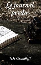 Le journal perdu by Nocttis