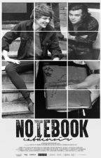 Notebook [Larry] Short story by catdenoir