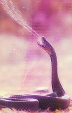 kms (kill my snakeself)[rants & stuff] by FancySnake