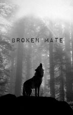 Broken Mate - What Really Happened by TurtleCat5