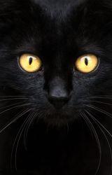 The Cat by EmmaWeaslette
