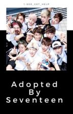 Adopted by Seventeen {AU} by 1-800_get_help