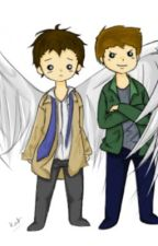 Destiel Oneshots by AliceeLaa
