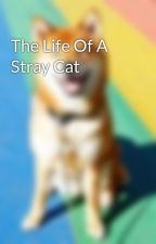 The Life Of A Stray Cat by BoxCatWrites