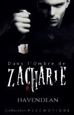Dans l'ombre de Zacharie by Havendean