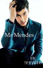 Mr. Mendes (s.m fan-fiction) by smfannn
