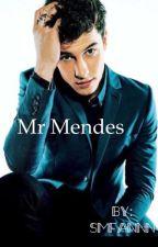 Mr. Mendes (s.m fan-fiction) by smfannn