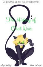The Mistery of Chat Noir by Moon_Infinity13