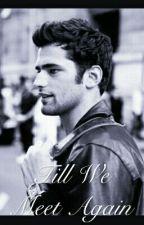 Till We Meet Again by vanillllllla