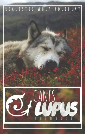 Canis Lupus    A True Realistic Wolf Roleplay by Rhenarra