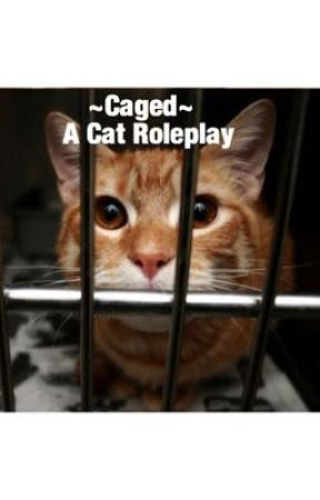 ~Caged~ A Cat Roleplay by HiddenPuzzlePieces