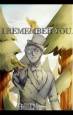 I Remember You. {BillDip} [ON HOLD] by TheEmosphere