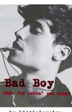 Bad Boy Made For Lovin' You Baby? by LittleLovelyy