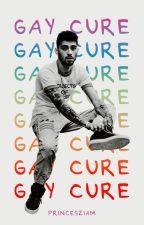 ziam; Gay Cure by princesziam