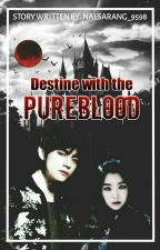 Destined with the Pureblood (VRene FanFic) by NaeSarang_9598