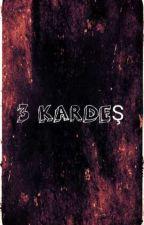 3 Kardeslik Macera by Tahacan1907