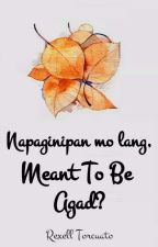 Napaginipan Mo Lang, Meant To Be Agad? by Rexann