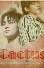 Cactus by tadittaaa