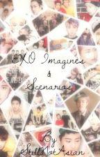 Exo Imagines & Scenarios by StillNotAsian