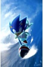 Sonic Boom: I'll Never Forget You {Sonic X Reader} by Z_RainBow_Z
