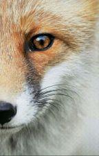 Marauder Foxy by flamepatronuss