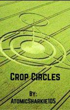 Crop Circles by BennyWildguy