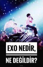 EXO nedir, ne değildir? ✓ by baekkieismyworld