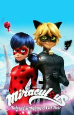 miraculous ladybug ... versión realista by any-chan65