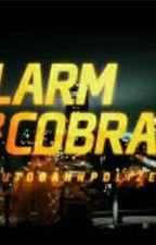 Cobra 11 und Cobra 7 by Vio116helene