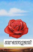 mr arrogant | çeviri by sugadise