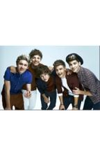 One Direction Prefrences by emilycorrine