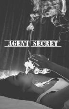 Agent secret  by eva_emb