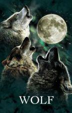 WOLF by RandomOpenDoors