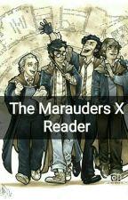 The Marauders X reader by LuLu-midnight