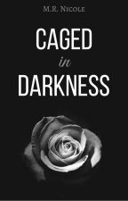 Caged in Darkness **ON HOLD** by MR_Nicole