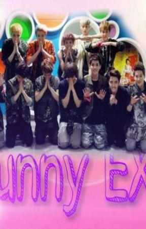 Funny EXO by YoonNoEul94
