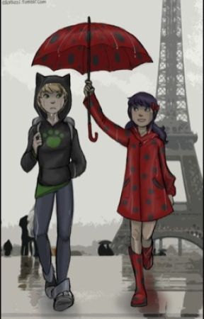 Spies Adrienette and ladynoir by minniecat2000