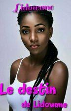 Le Destin De Lido Wane  by Lidowane