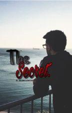 The Secret. || Piero Barone - Il Volo by _dreamwillcometrue